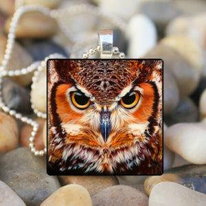 Jewelry - Owl Cabochon Pendant Rich warm colors.